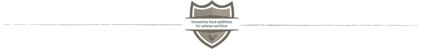 Innovative feed additivesfor animal nutrition